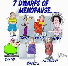 seven dwarves of menopause2
