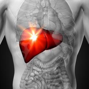 Liver Function and Health Tips