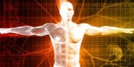 Functional Medicine examines the whole system