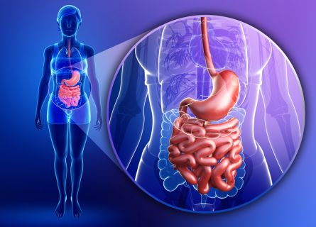 Digestive pain can result from SIBO in the small intestine
