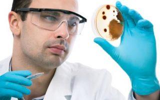 Testing for mycotoxins to diagnose mold illness