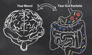 There's a two-way connection between gut flora and mental health