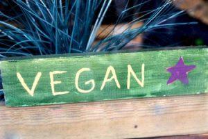 Vegan Diet preparation