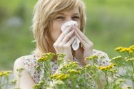 An allergy specialist can help you manage your allergy symptoms