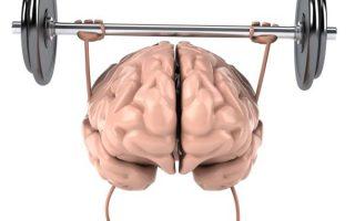 Essential Fatty Acids and Brain Health